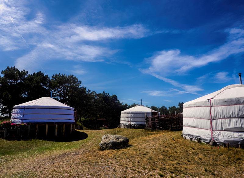 Glamping Texel-Yurts