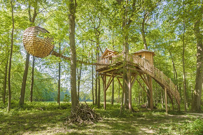 boomhut camping, Boomhut camping